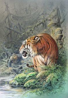 by Alexandr Degtev Wildlife Paintings, Wildlife Art, Animal Paintings, Animal Drawings, Tiger Drawing, Tiger Art, Big Cats Art, Cat Art, Tiger Species