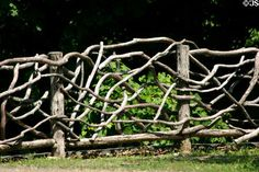 branch fence... thats neat!!