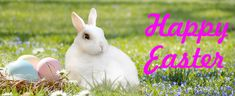 Why does Easter move, what activities can keep the children entertained and what gifts do you give for Easter? We answer all of these in our Easter guide for 2018 Passover Images, Good Friday Images, Easter Bunny Pictures, Happy Easter Bunny, Easter 2020, Easter Traditions, Easter Activities, Fun Activities, Losing A Child