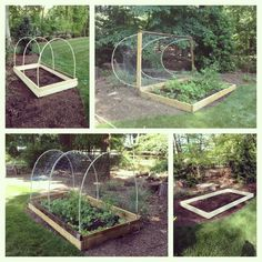 DIY deer-proof veggie garden - idea for beds outside of fence...can still be used in waffle beds with the pvc tubing in ground as a base for the top