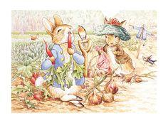 Colección de Ilustraciones de Beatrix Potter | Amor por los cuentos