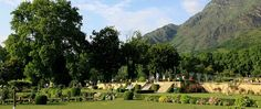 Trouble in Paradise, KASHMIR VALLEY