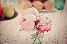 Baby-pink peonies