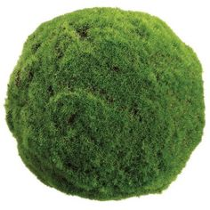 """Check out this item at One Kings Lane! 10"""" Moss Ball, Faux"""