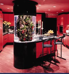 not crazy about the kitchen but like the idea of incorporating a fish tank.