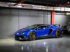 81 Best Lamborghini Images Lamborghini Lamborghini