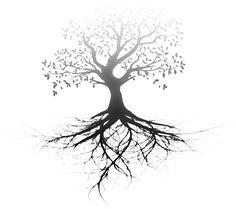 oak tree silhouette graphics