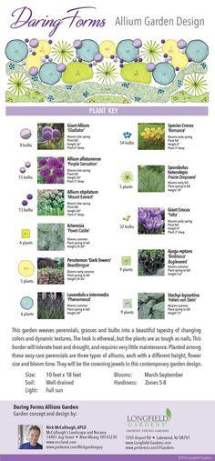 Allium Garden Design: Daring Forms