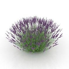 Download 3D Flower