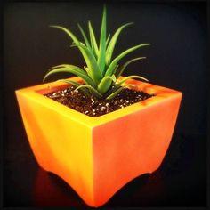 36 Best Marduk Ceramics Oasis Self Watering Planters Images Oasis