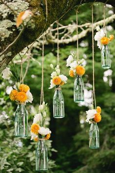hanging flowers for outdoor wedding ceremony / reception decor. Suspend clear so. hanging flowers for outdoor wedding ceremony / reception decor. Suspend clear soda bottles from tree branches with jute / rustic twine. Backyard Wedding Decorations, Reception Decorations, Reception Ideas, Hanging Decorations, Outdoor Tree Decorations, Outdoor Trees, Floral Decorations, Simple Outdoor Wedding Decorations, Antique Wedding Decorations