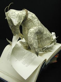 Sachiyo Yoshida  #goatvet loves this- so many of my books have pages missing from a quick goat who ate one while I was reading it.