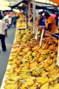 Bananas on display waiting to tickle some unsuspecting customer's taste buds.