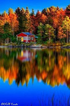 ~~little cottage by the lake, Sweden by Marek Czaja~~ everyone needs a place like this to relax Beautiful World, Beautiful Places, Beautiful Pictures, Amazing Places, Simply Beautiful, Wonderful Places, Autumn Scenery, Autumn Lake, Autumn Forest