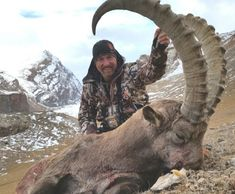 Mid-Asian ibex hunts in Kyrgyzstan are one of the best hunting values in the world. These hunts are very affordable when compared to other ibex hunts, and especially sheep hunts. Big Game Hunting, Elk Hunting, Hunts, Outdoor Activities, Sheep, Fun Stuff, Asian, World, Fun Things