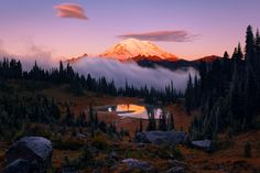 Morning glow on the beautiful Mt. Rainier just after fog clears above Tipsoo Lake Washington State [OC] [20001333] #reddit