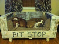 Cute pet bed idea