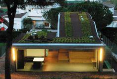 Modern green roof on house - Spain