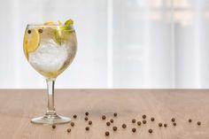 ¿Te apetece un gin & tonic? Would you like a gin & tonic?