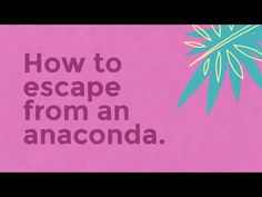 Mount Pleasant Group: How to escape from an anaconda | Ads of the World™