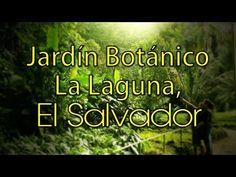 El Salvador : Parque Jardín Botánico La Laguna, Antiguo Cuscatlán. HD - YouTube