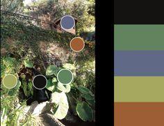 Negro, verde oscuro, azul, verde claro y marrón(3)