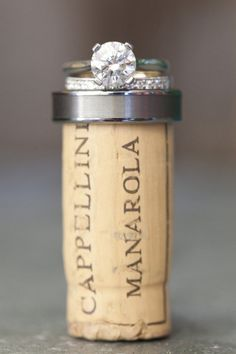 A picture with the cork from the champagne toast. This would be so cute to hang in your kitchen!