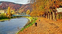Autumn impressions (22): On the River Lahn in Lahnstein (Germany ...
