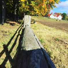 Ian Mckenna — Fence | clôture  #fence #cloture #ferme...