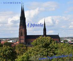 Vom Parkplatz aus machten wir uns auf den Weg zum Schloss Uppsala, von wo aus wir einen guten Ausblick auf den Botanischen Garten hatten. Gebaut wurde dass Schloss Uppsala im 16. Jahrhundert. Im Schloss befinden sich seit Beginn des 20. Jahrhunderts verschiedene Einrichtungen der Universität Uppsala, ein Kunstmuseum und auch die Wohnung des Regierungspräsidenten der Provinz Uppsala. Im Schloss innen waren wir jedoch nicht, da wir die Aussicht auf dem Vorplatz genossen haben. Uppsala, Dom, Cologne, Cathedral, Building, Travel, Front Courtyard, Museum Of Art, Starry Night Sky