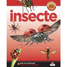 Insecte- Helen Flint; Varsta: +3 ani; Avand sute de ilustratii mari, expresive si detaliate, dar si informatii de calitate si captivante, enciclopedia te va atrage cu fiecare pagina tot mai mult in lumea lecturii, indemnandu-te sa descoperi miciile vietuitoare. Mai, Animals, Insects, Animales, Animaux, Animal, Animais