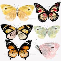Conjunto de vetores de borboletas coloridas detalhadas para o projeto Butterfly Stencil, Butterfly Painting, Butterfly Watercolor, Butterfly Art, Mom Daughter Tattoos, Tattoos For Daughters, Butterfly Images, Butterfly Effect, Decoupage Vintage