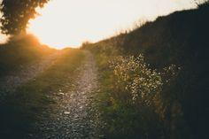 7 Habits of Ungrateful People Paros, Psalm 25 5, Ungrateful People, Trail, Natures Path, Names Of Jesus, Nature Photos, Hd Photos, Pathways