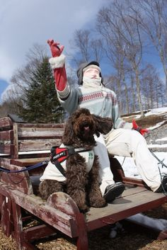 NAOZOくん/萌木の村にて/雪で真っ白な萌木の村。ソリにお姉ちゃん犬のハーブを乗せて写真を撮っていると、無理やり上がって来たNAOZO。よっぽ ど乗りたかったのかな?おじさんが不思議でお顔をじーっと見ていました。