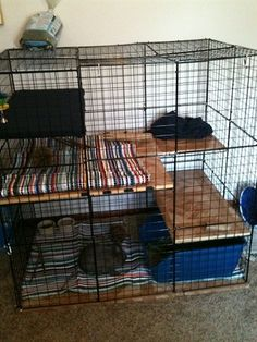 Advice Needed: Ashe's Condo Diy Bunny Cage, Diy Bunny Toys, Bunny Cages, Rabbit Cages, House Rabbit, Bunny Rabbit, Chinchilla, Rabbit Habitat, Rabbit Information