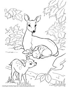 Farm animal coloring pages these free printable farm animal Angel Coloring Pages Working Donkey Coloring Page Egg Coloring Pages