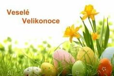 Easter Day Eggs Flowers in Grass Photography Backdrop Prop Photo Background Easter Backgrounds, Flower Backgrounds, Green Flower Photos, Green Flowers, Le Blog Du Goumy, Happy Easter Wallpaper, Easter Pictures, Flamingo Party, Coloring Easter Eggs