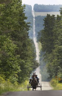 Amish communities booming in western New York State Love the view of the road behind.