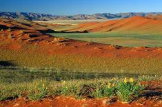 © Gondwana Collection - Désert du Kalahari - Namibie