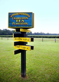 Charleston Tea Plantation sitting on 127 acres, built on the historic and beautiful Wadmalaw Island that was claimed by the English in 1666. There are tours, a gift shop, and as much tea as you could ever drink. Oh, did I tell you that this is the ONLY place in North America that grows tea? And, they grow 320 varieties!