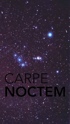 Phone Wallpapers Quotes Carpe Noctom Carpe Noctem Stretched Canvas Quotes