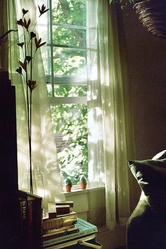 the light from our window. by nataliecreates on Flickr.