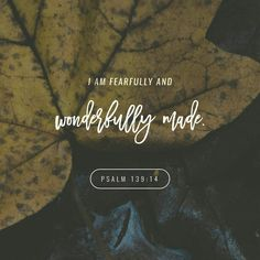 I praise you because I am fearfully and wonderfully made; your works are wonderful, I know that full well. Psalm 139:14 NIV http://bible.com/111/psa.139.14.NIV