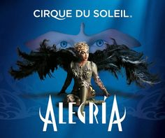 The rose rosa: Alegría, Cirque su Soleil
