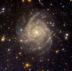 'Hidden Galaxy IC 342' image from the #NASA_App