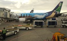 "Boeing Alaska Airlines jet parked the airport, painted motto ""We're All Pulling Together"", sled dog, boat, beluga whale, a musher in Anchorage"