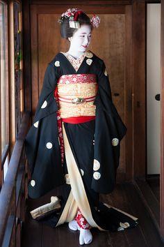 Location is Chionsya, Kyoto, Japan. Geisha Japan, Geisha Art, Kyoto Japan, Japanese Costume, Japanese Kimono, Kimono Outfit, Kimono Fashion, Japan Tag, Japanese Beauty