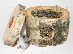 zoorizont.de - Seite 7 - ARCHIV - Zubehör, Auslaufbau und Bastelecke - www.das-hamsterforum.de