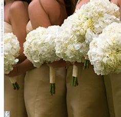 White Hydrangeas for the Bridesmaids. What I originally wanted, but just too pricey. Went with a mix of flowers including a few green hydrangea.