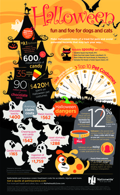 Safety tips & fun ideas for Halloween with your pet!